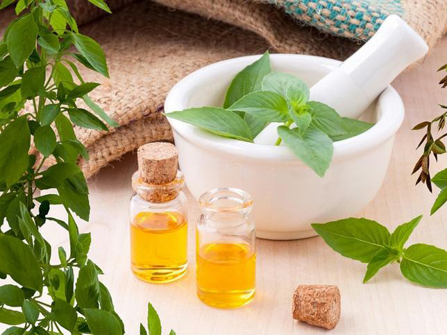 propiedades del árbol de té