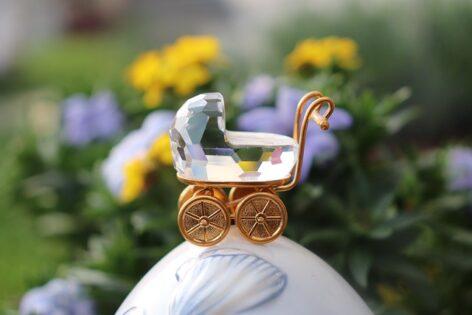 Los carritos Jane Muum